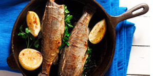 Fried Trout